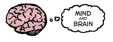 mind and brain